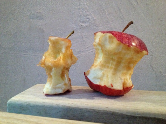 fruit on a plane - apple cores