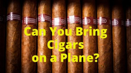 Can You Bring Cigars on a Plane?